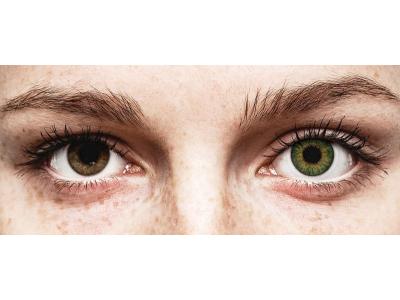 Air Optix Colors - Green - ohne Stärke (2 Linsen)