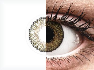 FreshLook ColorBlends Pure Hazel - ohne Stärken (2 Linsen)