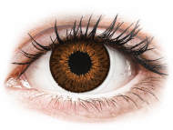 Farblinsen - Dioptrisch, Braun - Expressions Colors Brown - mit Stärke (1 Linse)