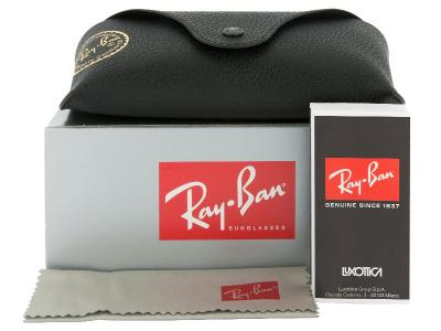 Sonnenbrille Ray-Ban Justin RB4165 - 622/2V POL  - Inhalt der Packung (Illustrationsbild)