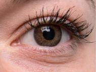 """TopVue Color Tageslinsen - mit Stärke (10Linsen) - """"Brown"""" bei einer grauen Augenfarbe"""